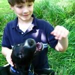 Ar Jūsų šuo Jums kanda ?