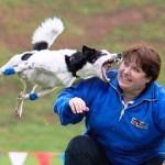 Dr. Ian Dunbar šuns įkandimų skalė
