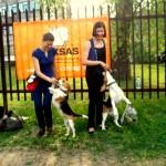 Rekso pasirodymas veterinarijos klinikos šventėje