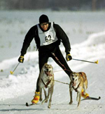 skijoringas