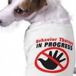Šuns agresija. Elgesio modifikavimas