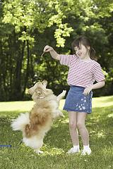 šuo šoka