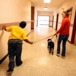 Vaikams autistams – keturkojų terapija