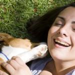 Kas yra kontaktas su šunimi?