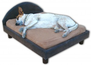Dog_bed_frame_small_with_headboard