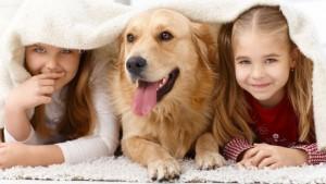 kids and pet