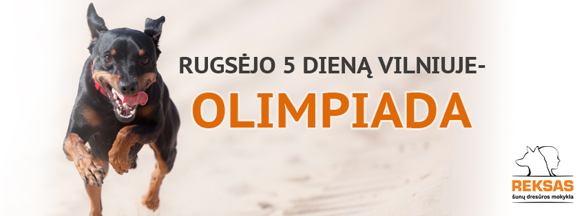 olimpiada-v13