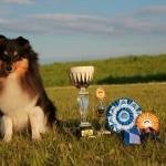 """Viktorija Černova: """"kiekvienas šuo gali būti paklusnus ir geras"""""""